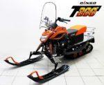 Двигатель снегохода «Динго»