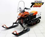 Снегоход «Динго Т200». Общая характеристика двигателя.