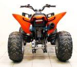Квадроцикл ABM Scorpion: 250, 125, 110,