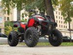 Квадроциклы Yacota Sela — детальный обзор моделей