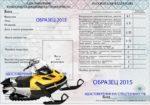 Водительские права на снегоход: какие они должны быть и нужны ли они